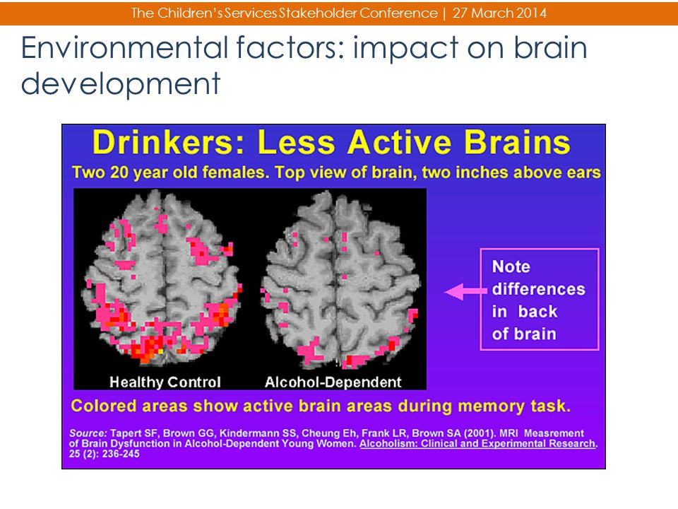 Environmental factors: impact on brain development