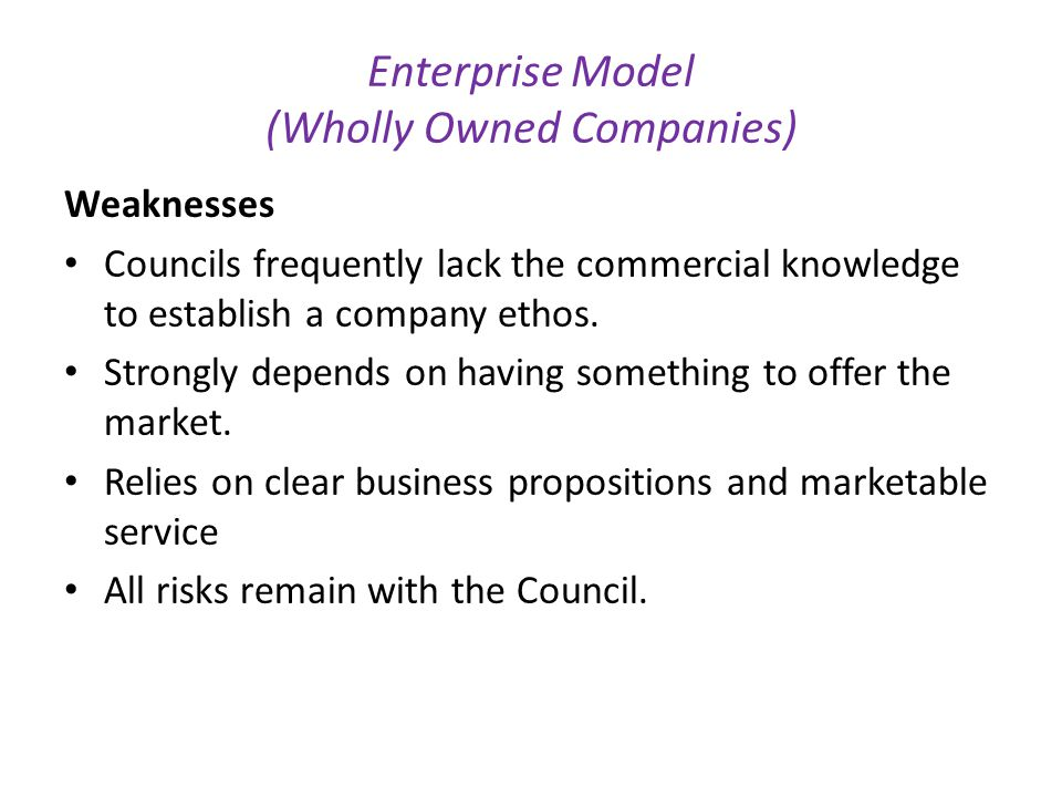 Enterprise Model (Wholly Owned Companies)