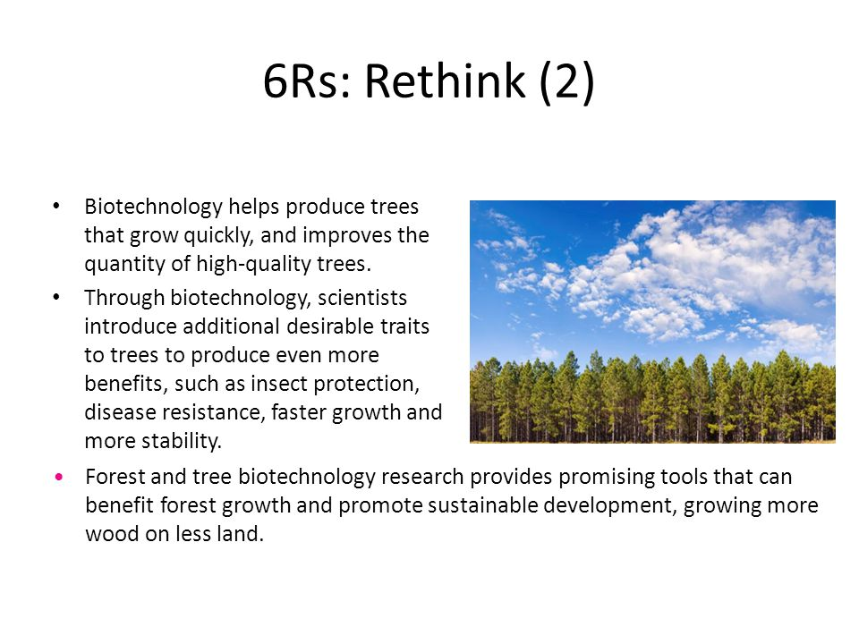 6Rs: Rethink (2) Biotechnology helps produce trees that grow quickly, and improves the quantity of high-quality trees.