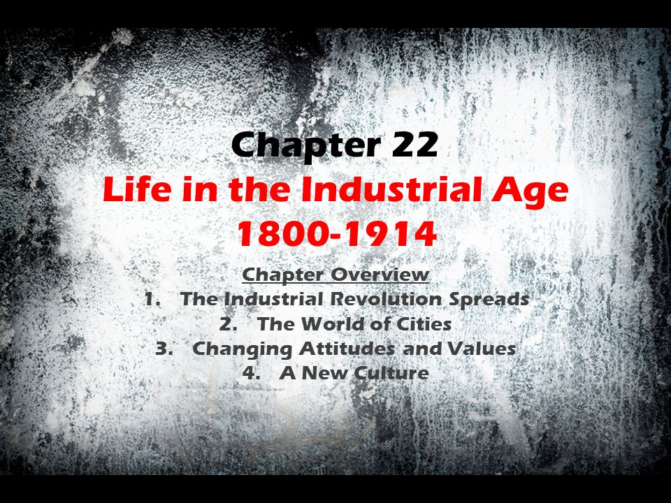Chapter 22 Life in the Industrial Age 1800-1914