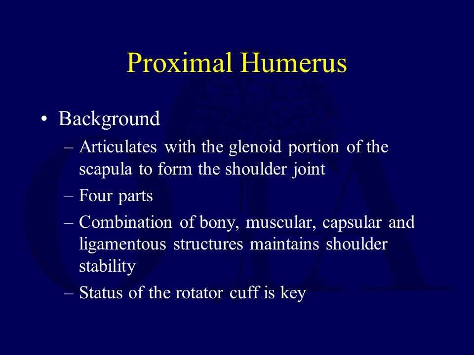 Proximal Humerus Background