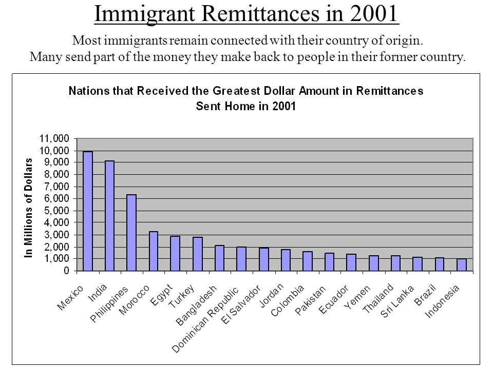 Immigrant Remittances in 2001