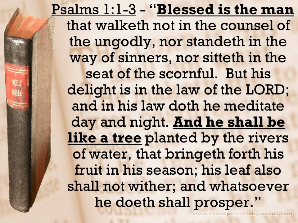 Psalms 1:1-3 - Blessed is the man that walketh not in the counsel of the ungodly, nor standeth in the way of sinners, nor sitteth in the seat of the scornful.