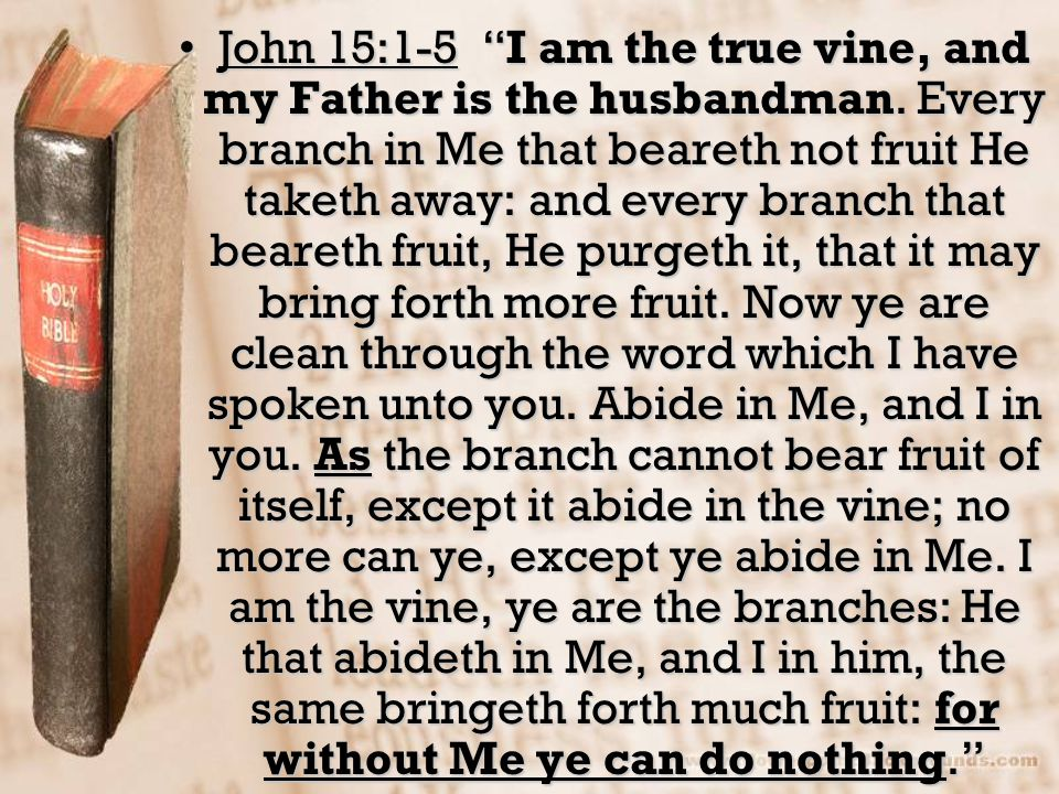 John 15:1-5 I am the true vine, and my Father is the husbandman