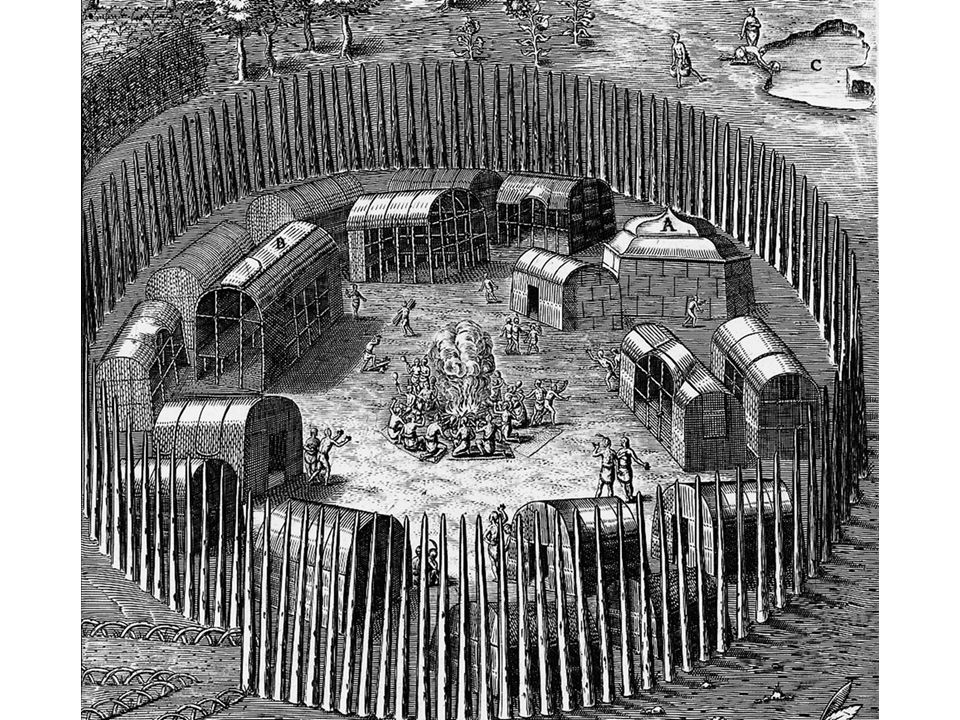 fig02_03.jpg Page 49: An engraving by John White of an Indian village surrounded by a stockade.
