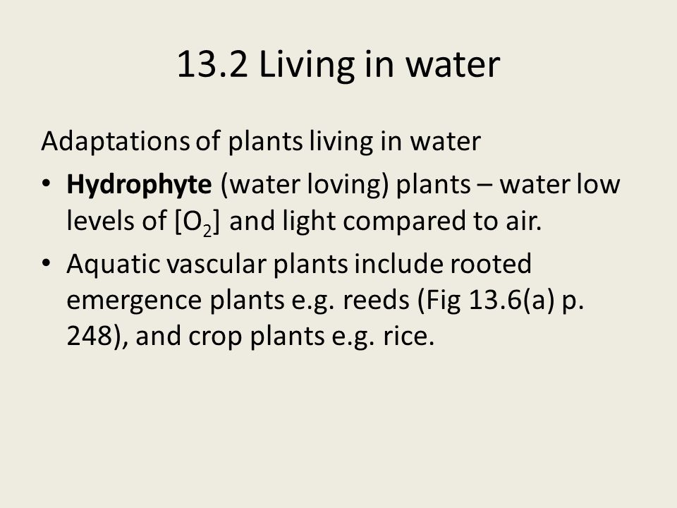 13.2 Living in water Adaptations of plants living in water