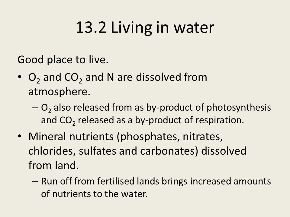 13.2 Living in water Good place to live.