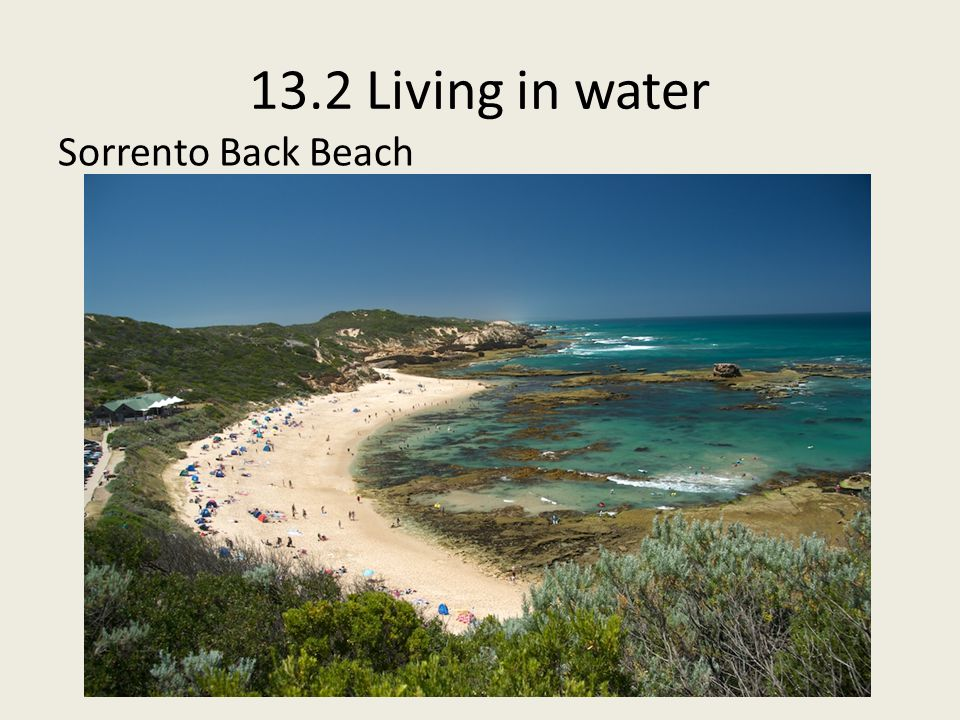 13.2 Living in water Sorrento Back Beach