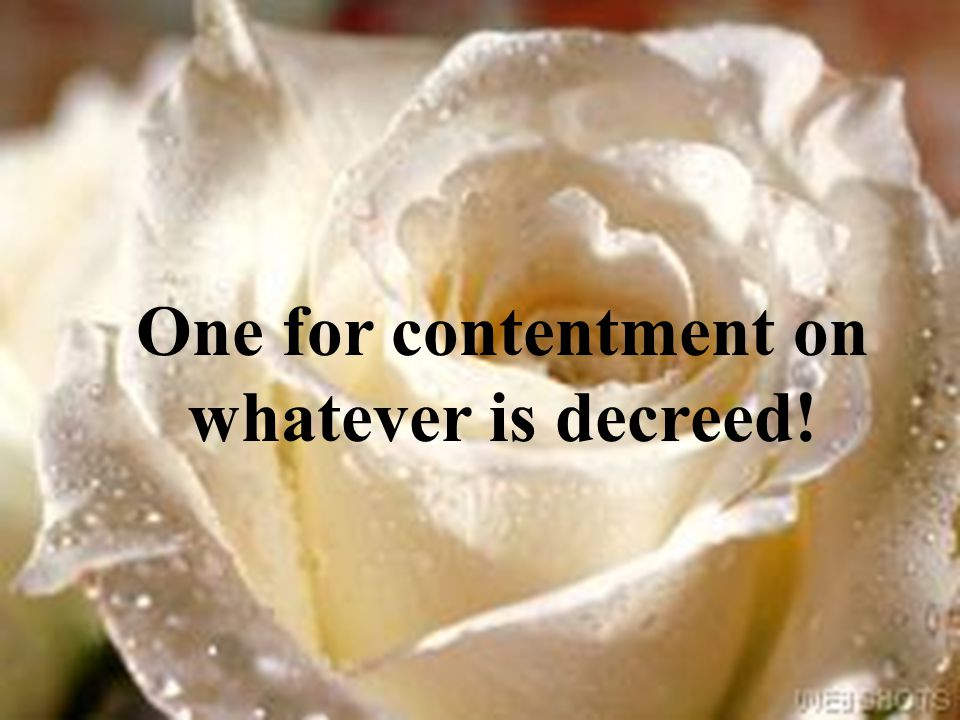One for contentment on whatever is decreed!