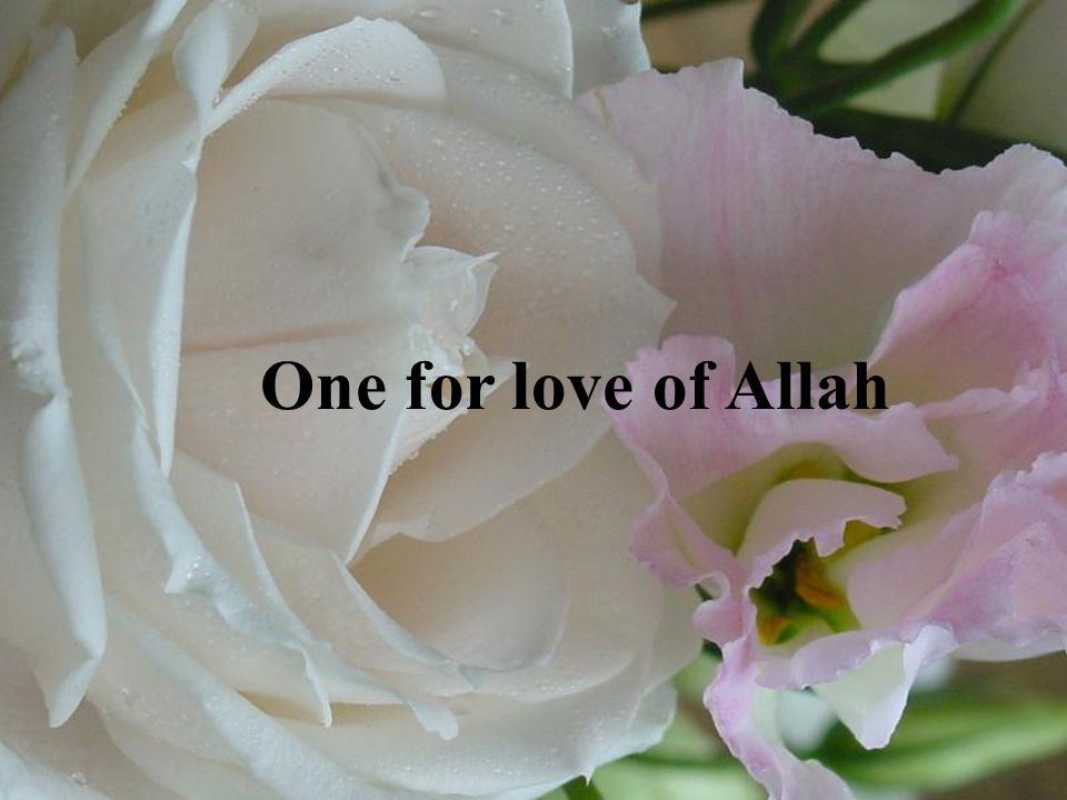 One for love of Allah