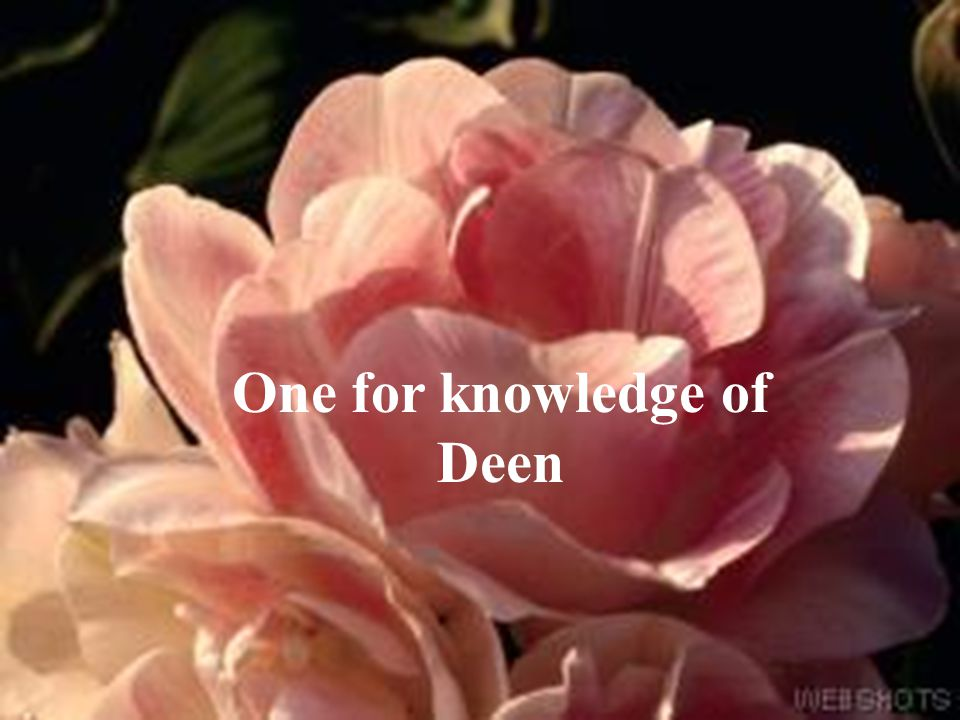 One for knowledge of Deen
