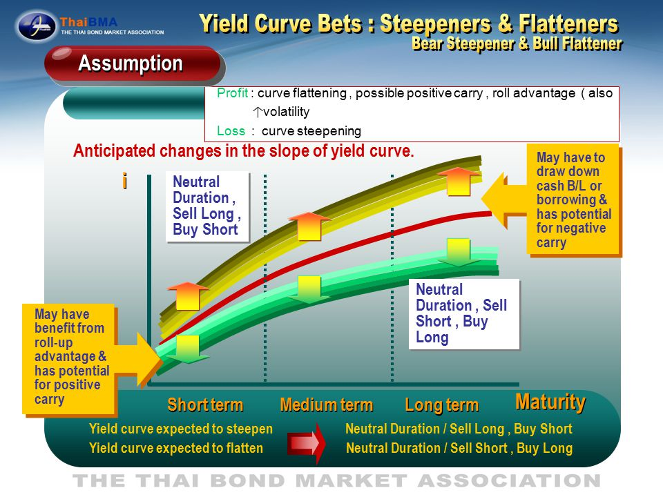 Yield Curve Bets : Steepeners & Flatteners