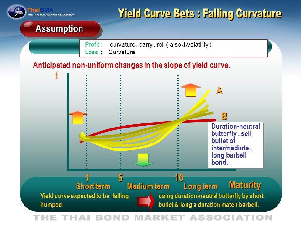 Yield Curve Bets : Falling Curvature
