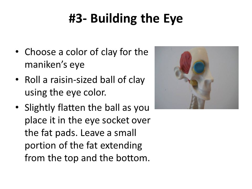#3- Building the Eye Choose a color of clay for the maniken's eye