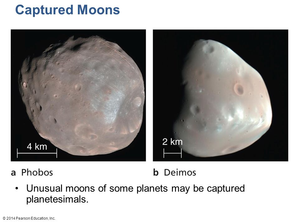 Captured Moons These are Phobos and Deimos, respectively. Unusual moons of some planets may be captured planetesimals.