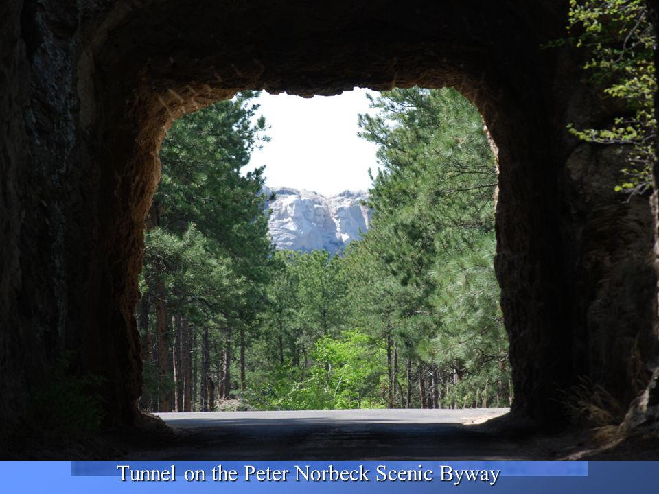 Tunnel on the Peter Norbeck Scenic Byway