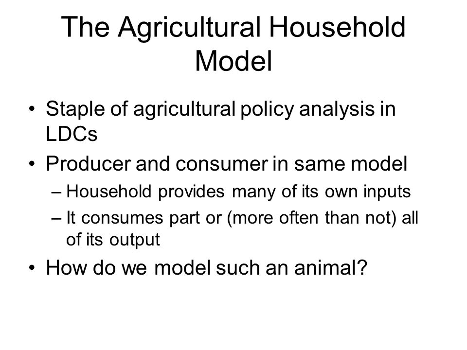 The Agricultural Household Model