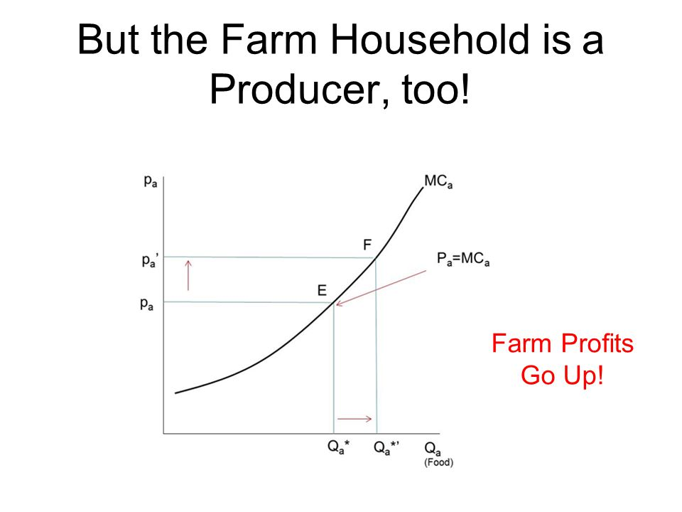 But the Farm Household is a Producer, too!
