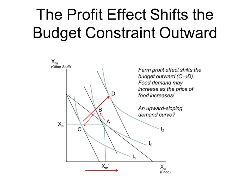 The Profit Effect Shifts the Budget Constraint Outward