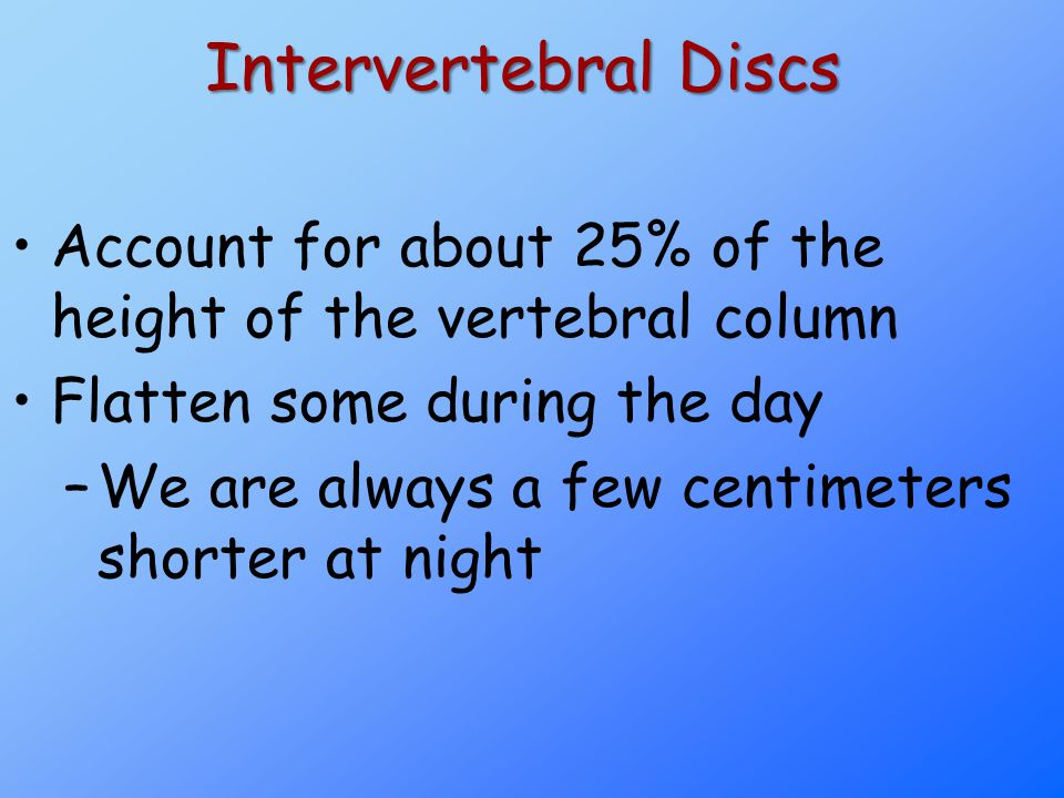 Intervertebral Discs Account for about 25% of the height of the vertebral column. Flatten some during the day.