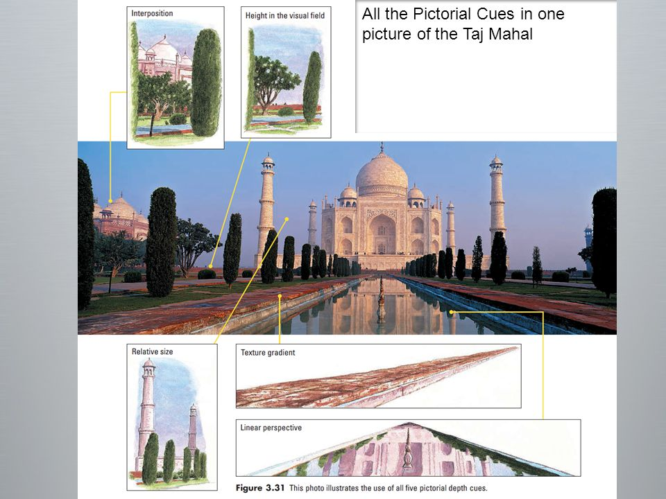 All the Pictorial Cues in one picture of the Taj Mahal