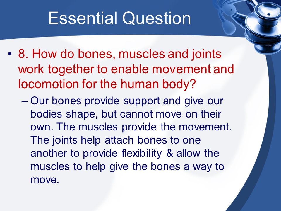 Essential Question 8. How do bones, muscles and joints work together to enable movement and locomotion for the human body
