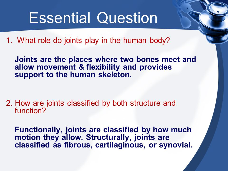 Essential Question 1. What role do joints play in the human body