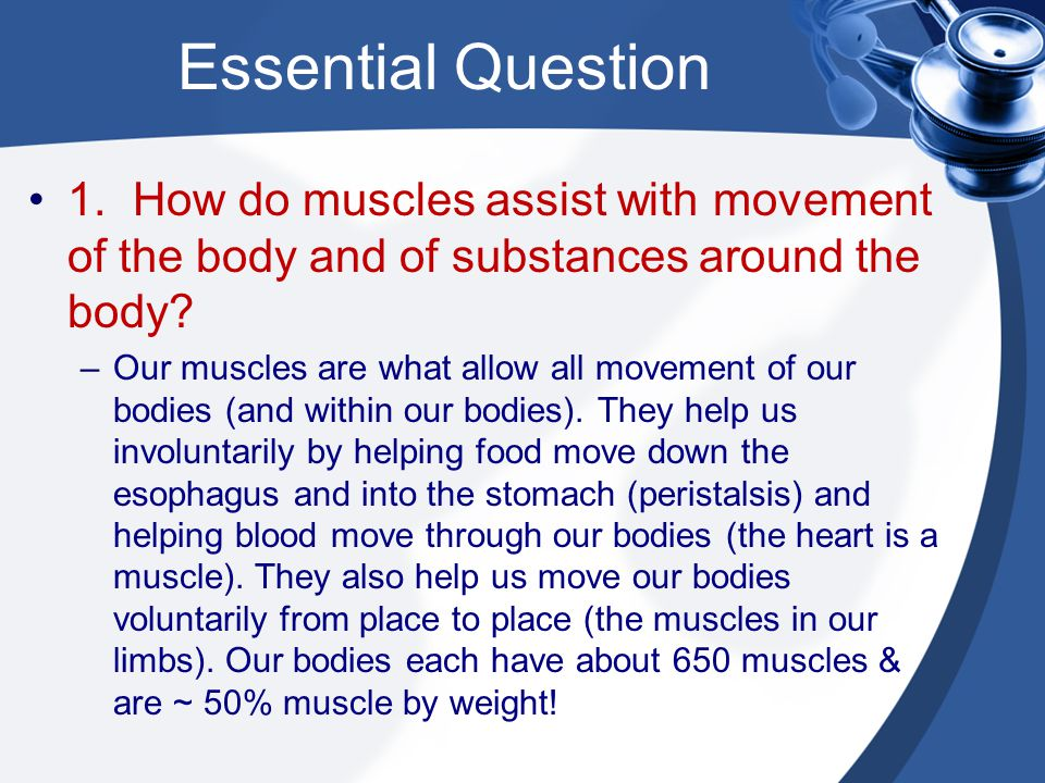 Essential Question 1. How do muscles assist with movement of the body and of substances around the body