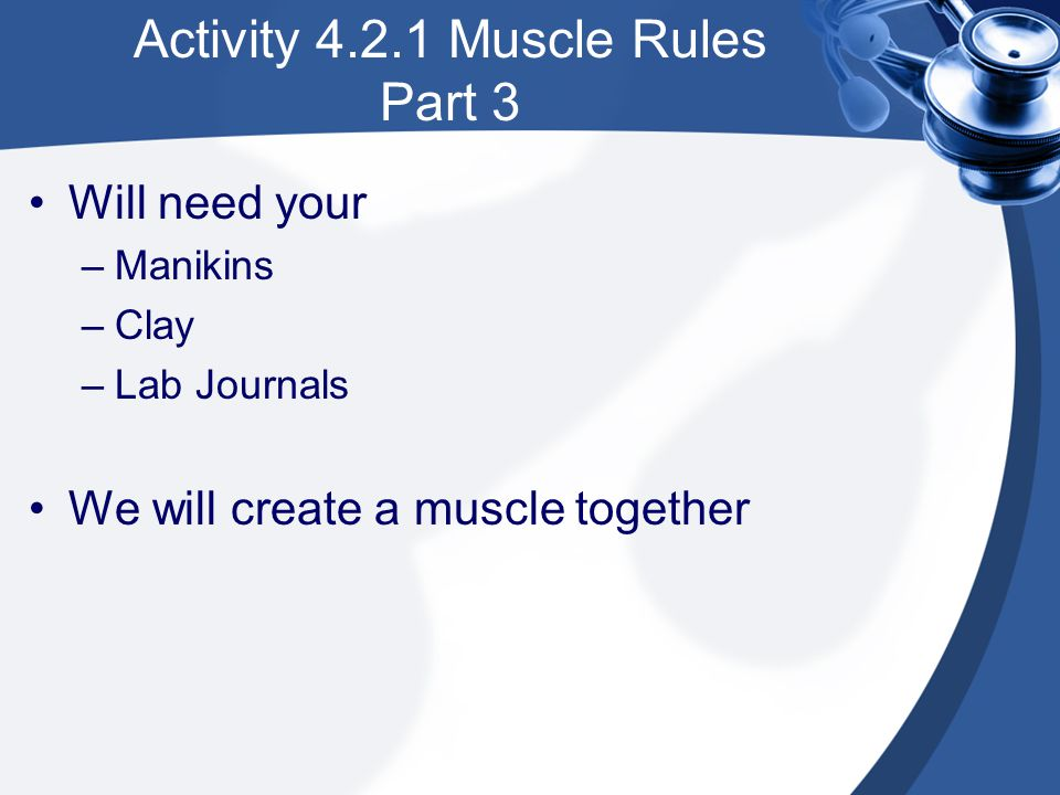Activity 4.2.1 Muscle Rules Part 3