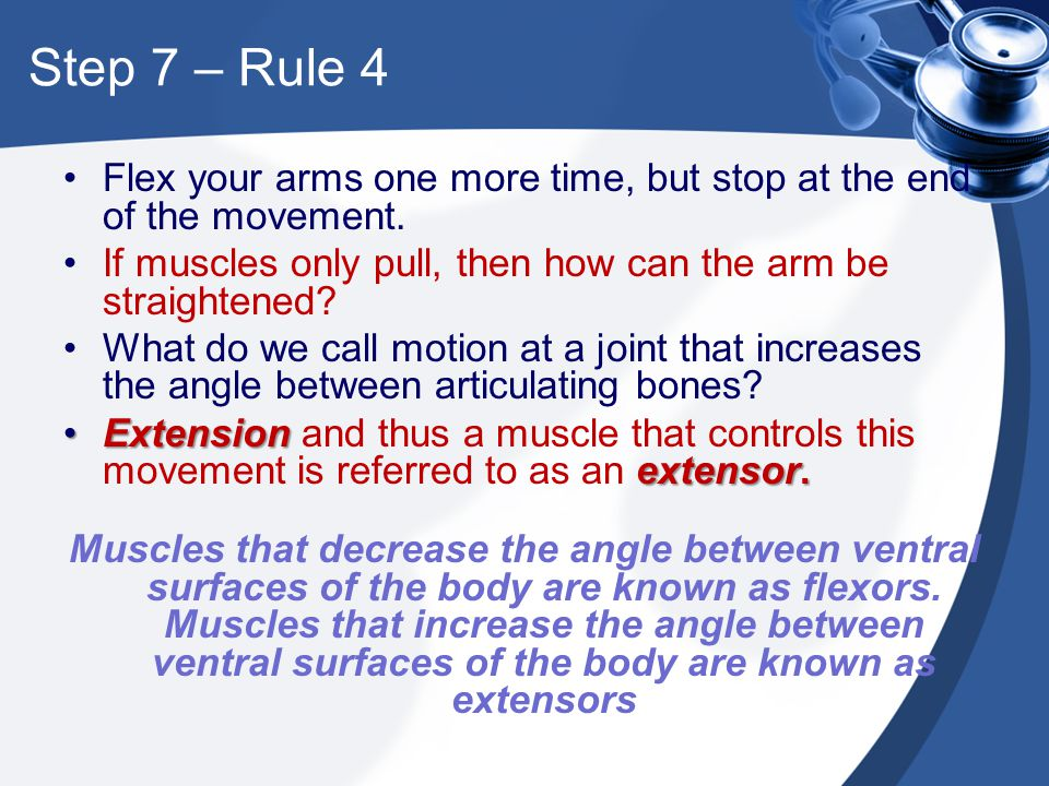 Step 7 – Rule 4 Flex your arms one more time, but stop at the end of the movement. If muscles only pull, then how can the arm be straightened