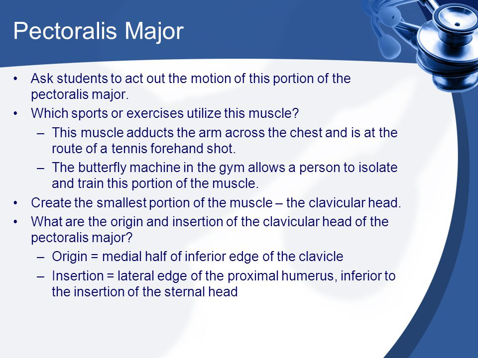Pectoralis Major Ask students to act out the motion of this portion of the pectoralis major. Which sports or exercises utilize this muscle