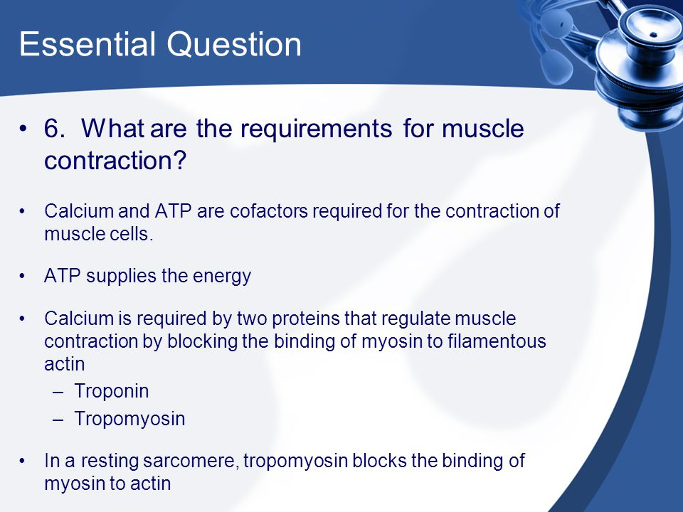 Essential Question 6. What are the requirements for muscle contraction Calcium and ATP are cofactors required for the contraction of muscle cells.