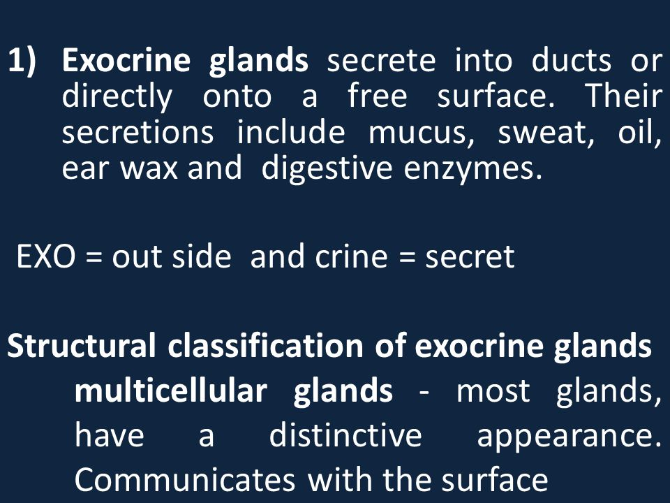 Exocrine glands secrete into ducts or directly onto a free surface