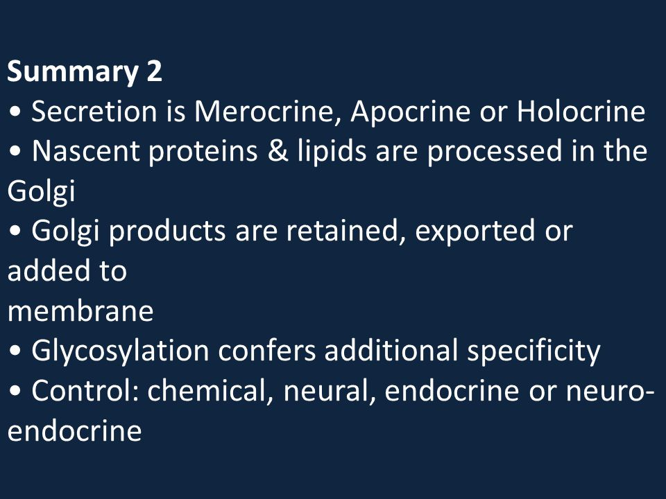 Summary 2 • Secretion is Merocrine, Apocrine or Holocrine • Nascent proteins & lipids are processed in the Golgi • Golgi products are retained, exported or added to membrane • Glycosylation confers additional specificity • Control: chemical, neural, endocrine or neuro-endocrine