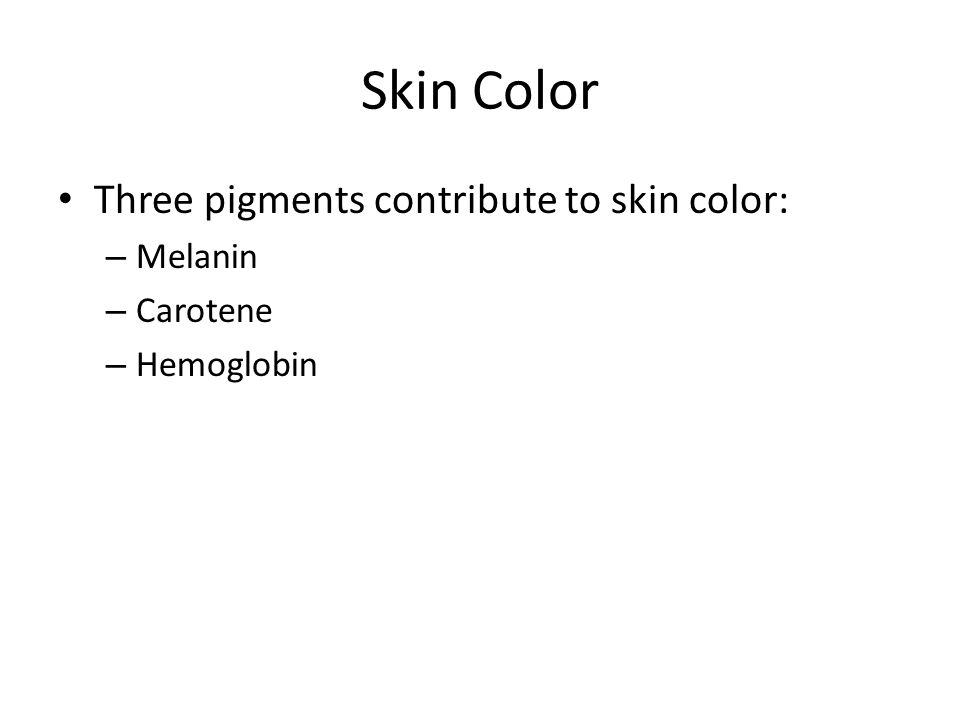 Skin Color Three pigments contribute to skin color: Melanin Carotene