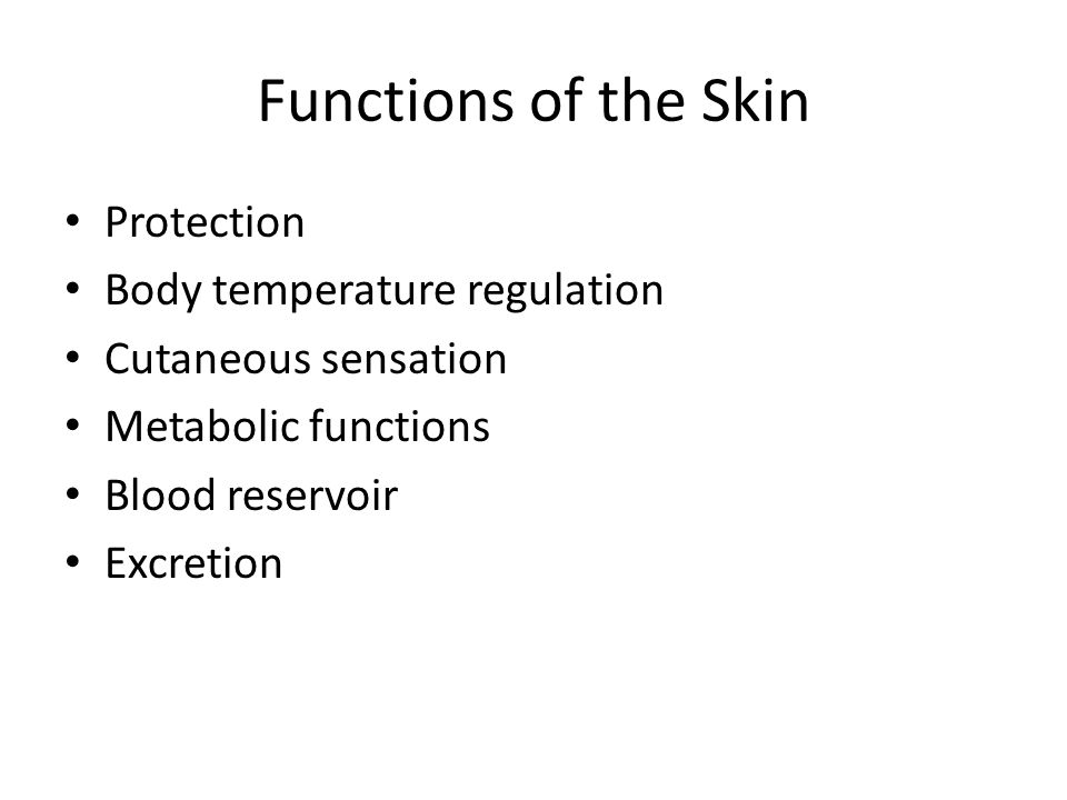 Functions of the Skin Protection Body temperature regulation