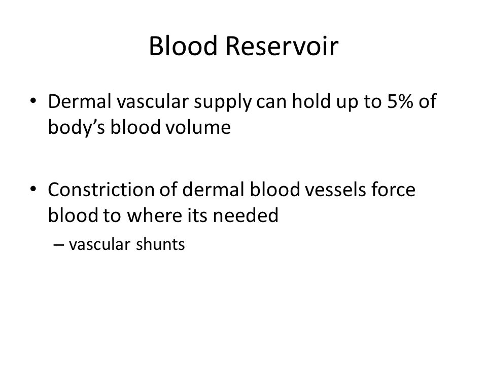 Blood Reservoir Dermal vascular supply can hold up to 5% of body's blood volume.
