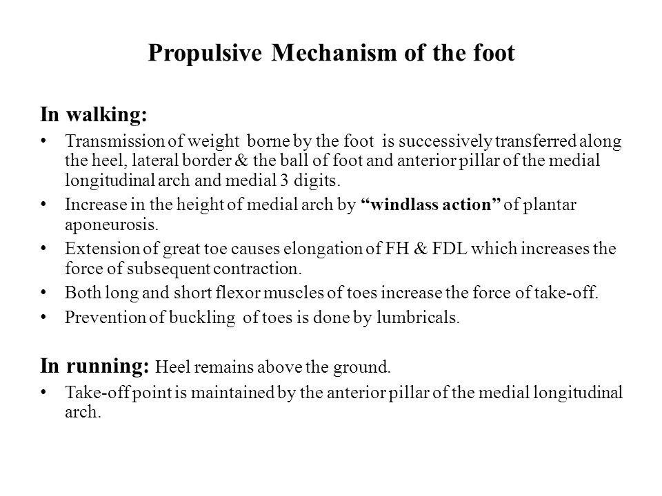Propulsive Mechanism of the foot