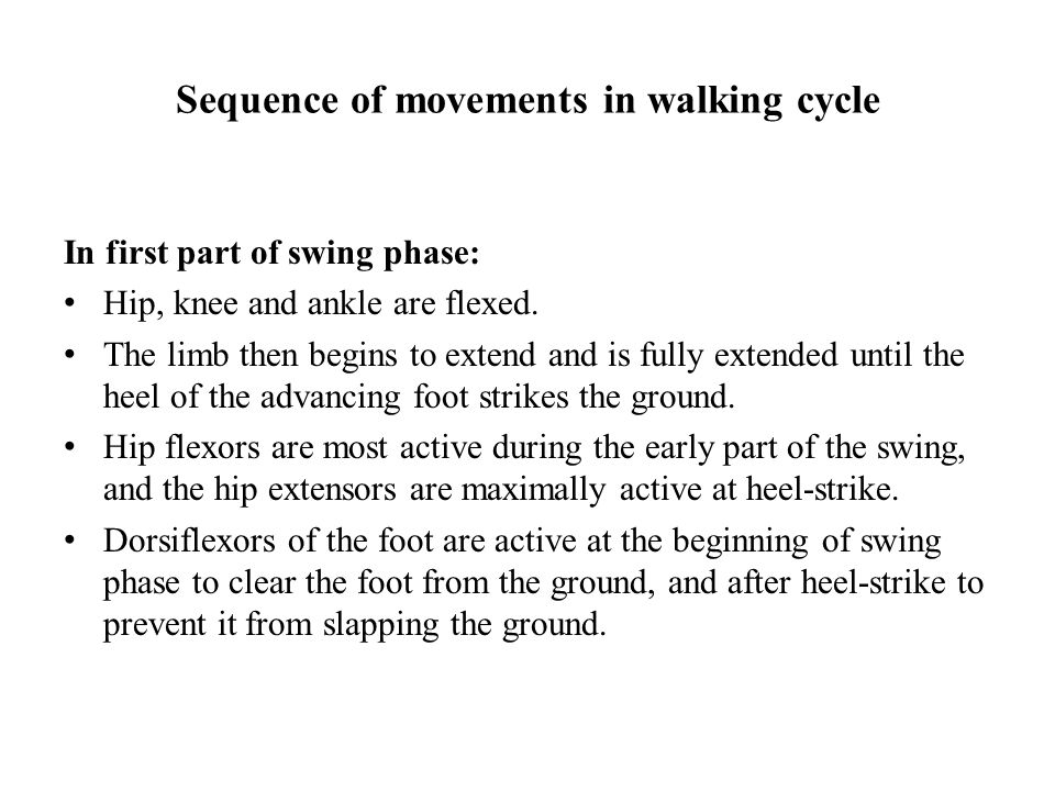 Sequence of movements in walking cycle