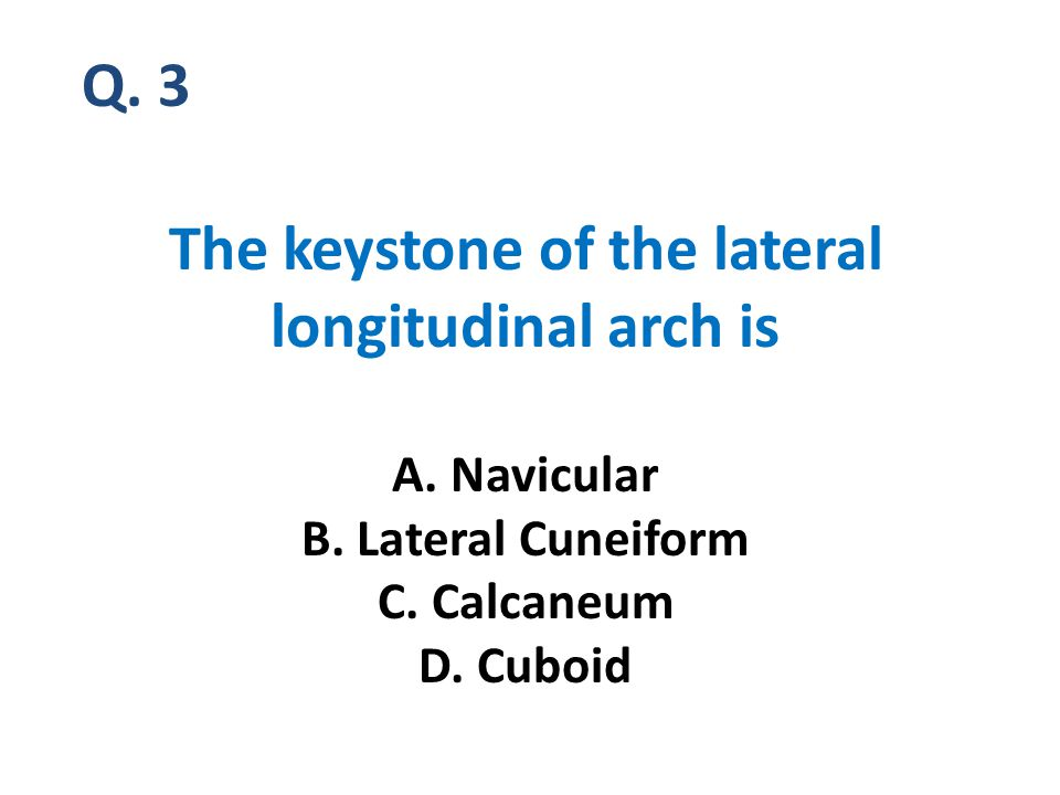 Q. 3 The keystone of the lateral longitudinal arch is A.