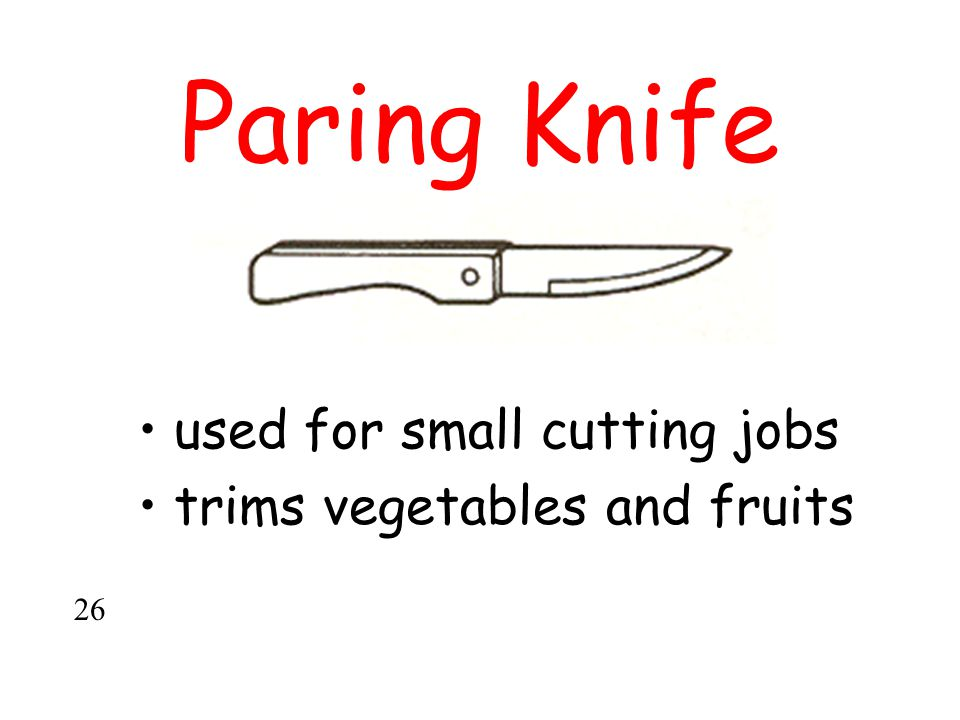 Paring Knife used for small cutting jobs trims vegetables and fruits