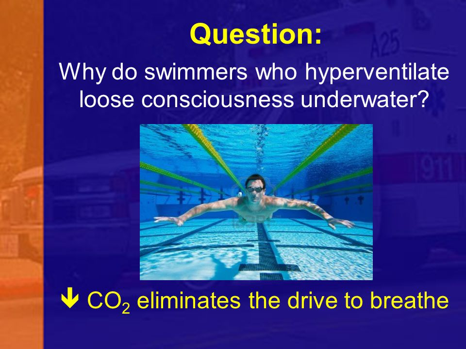 Question: Why do swimmers who hyperventilate loose consciousness underwater  CO2 eliminates the drive to breathe