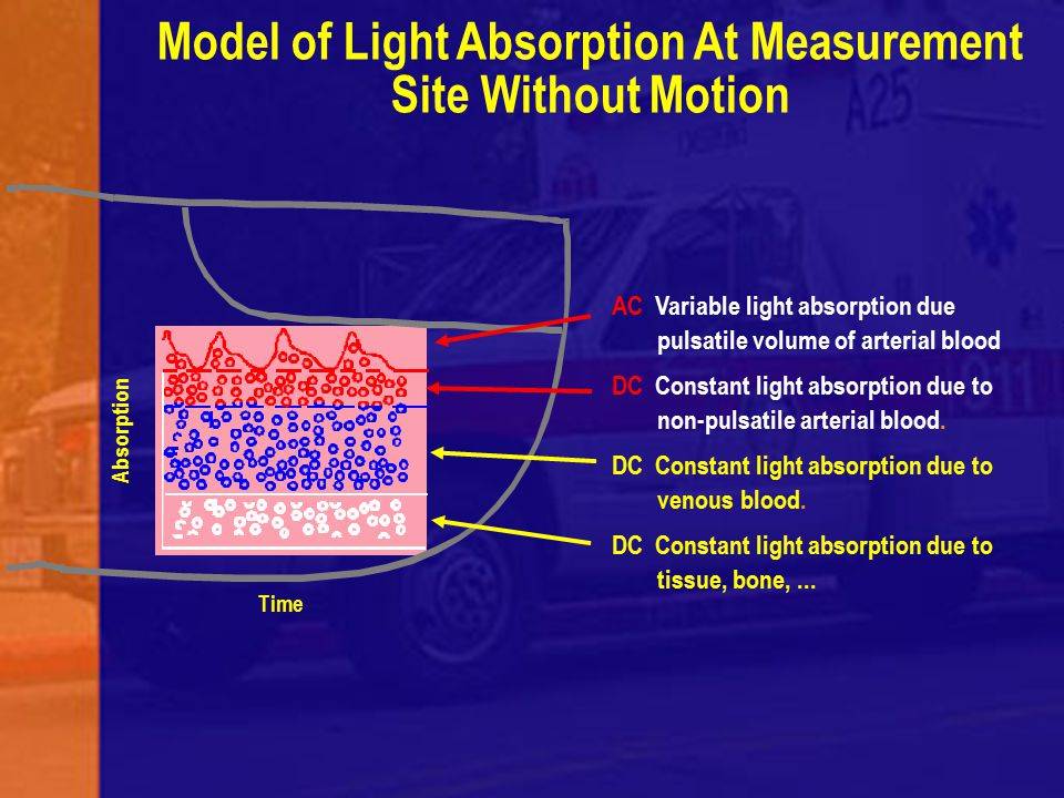 Model of Light Absorption At Measurement Site Without Motion