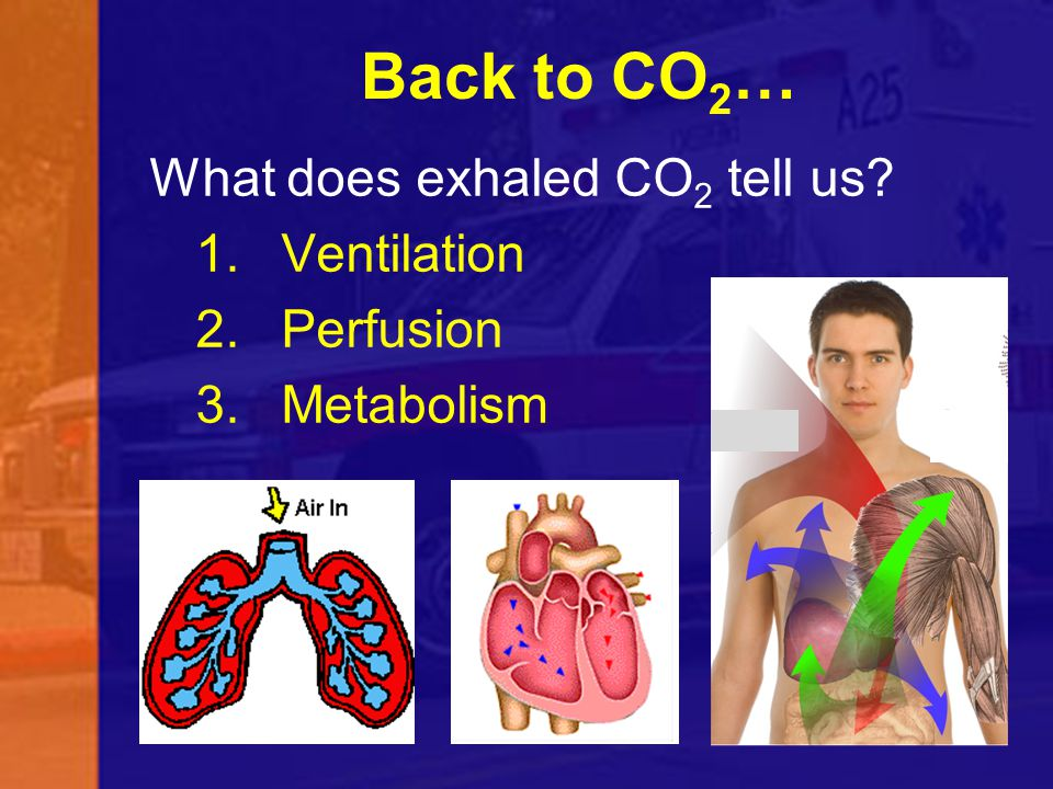 Back to CO2… What does exhaled CO2 tell us Ventilation Perfusion