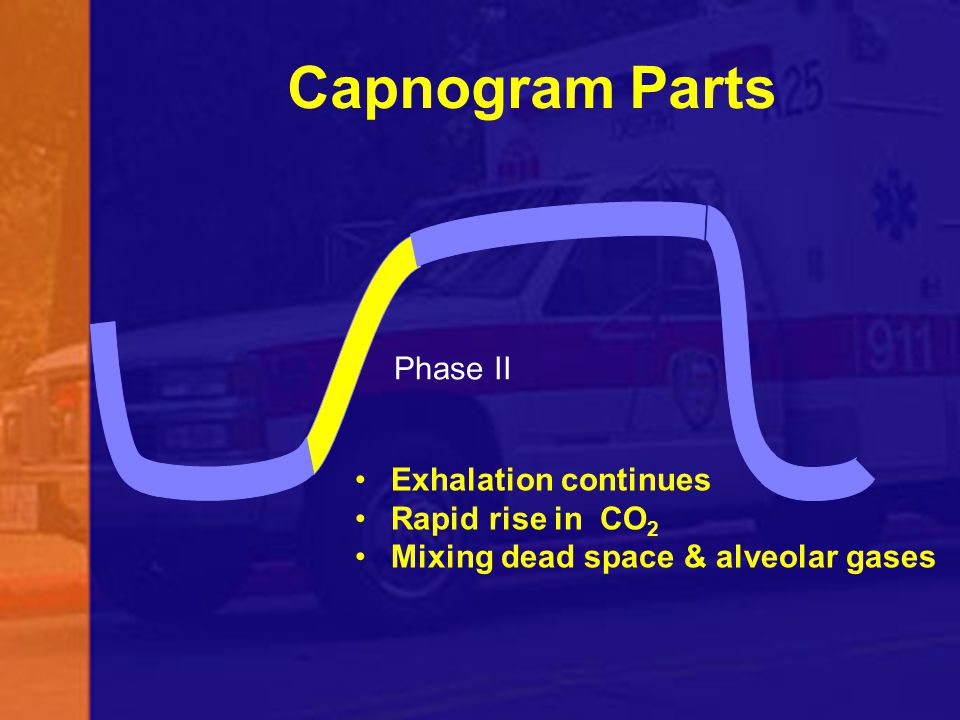 Capnogram Parts Phase II Exhalation continues Rapid rise in CO2
