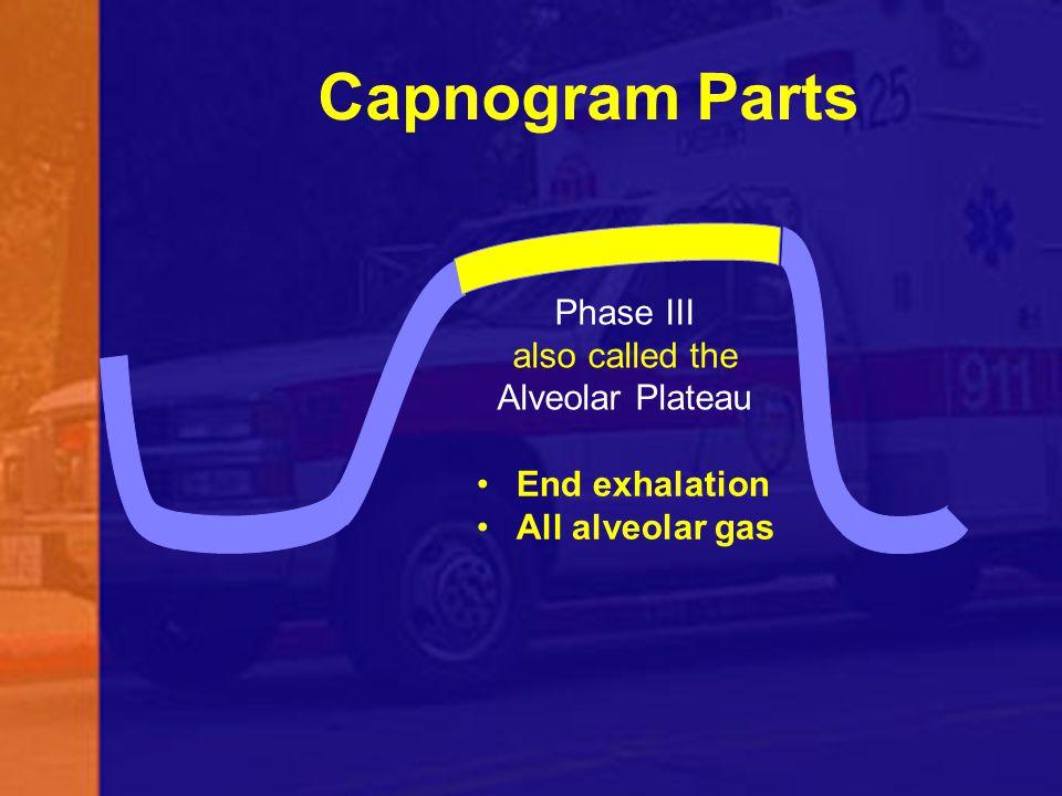 Capnogram Parts Phase III also called the Alveolar Plateau