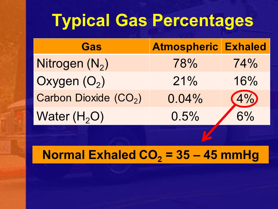 Typical Gas Percentages