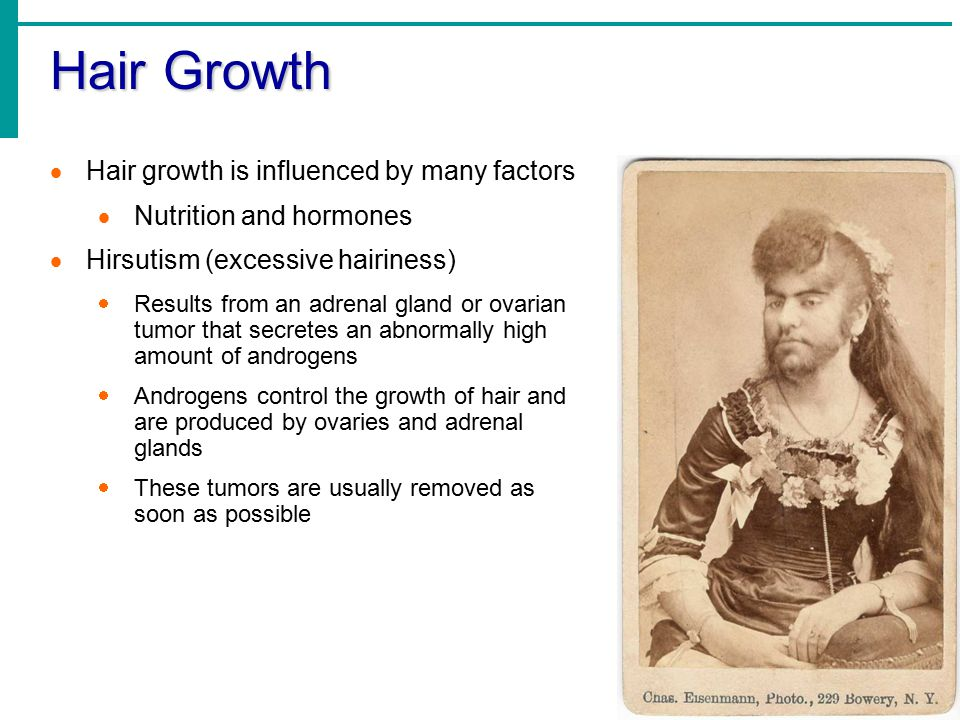 Hair Growth Hair growth is influenced by many factors