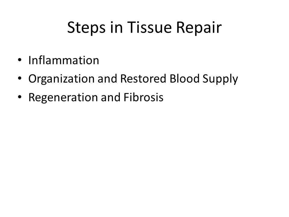 Steps in Tissue Repair Inflammation