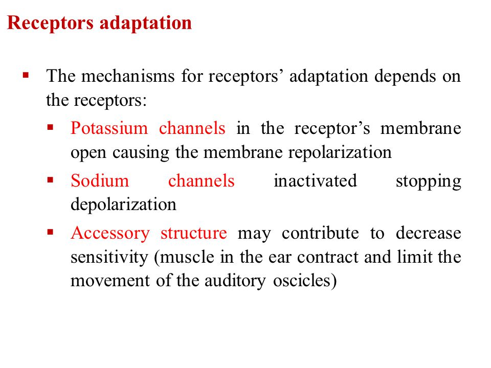 Receptors adaptation The mechanisms for receptors' adaptation depends on the receptors: